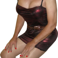 Red_Sexy_Lycra_Dress_1RS